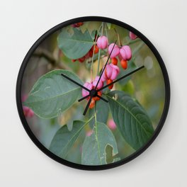 Spindle Tree (Euonymous europaeus) Wall Clock