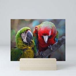 Pair of Macaws  Mini Art Print