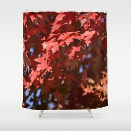 BRIGHT RED AUTUMN LEAVES IN THE SUNSHINE Shower Curtain