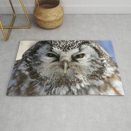 Boreal owl close up Rug