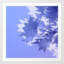 Purple Bough Art Print