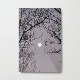 bare tree branches against the moonlit sky Metal Print