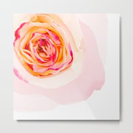 Mixed Rose Metal Print