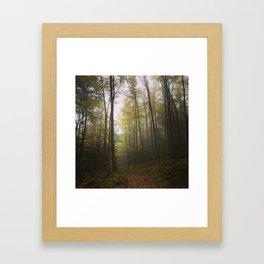 Canaan Valley, Autumn Framed Art Print