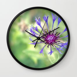 Searching For Sanity Wall Clock