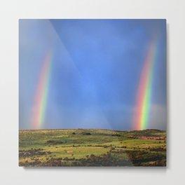 Doudble Rainbow Metal Print