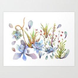 A Succulent Mixture Botanical Design Art Print