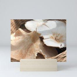 mushroom harvest Mini Art Print