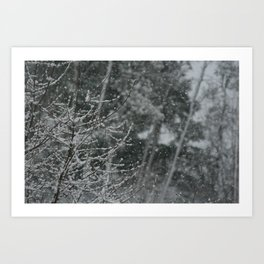 Snowy Day 1 Art Print