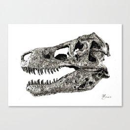 Sue Canvas Print