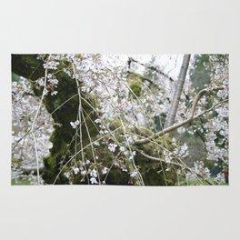 More Cherry Blossoms Rug