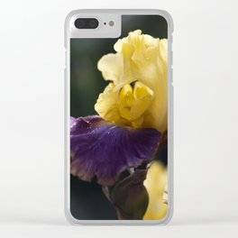 Purple and Yellow Springtime Iris Clear iPhone Case