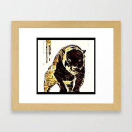 Pit Bull Models: Khan 01-01 Framed Art Print