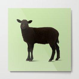 Black Lamb // Green Metal Print