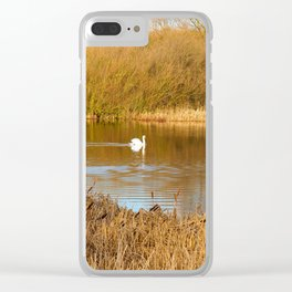Swan in a golden pond Clear iPhone Case