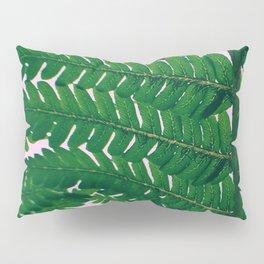 Fern Fronds Pillow Sham