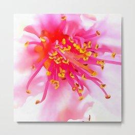 Artistic Peach Blossom Macro Metal Print