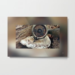 Talking Machine Silent Stories - Border Blur - 4b Metal Print