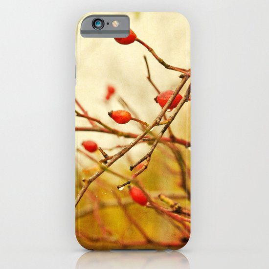 vintage rosehips iPhone & iPod Case