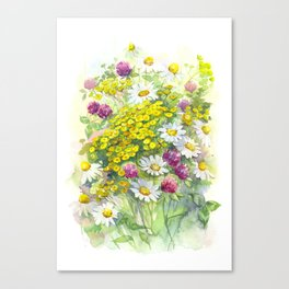 Watercolor meadow flowers spring Canvas Print