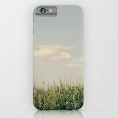 Campos de maíz Slim Case iPhone 6s