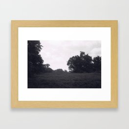 Fields Framed Art Print