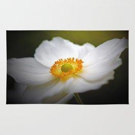 White Anemone Rug