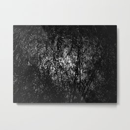 Light behind a willow tree Metal Print