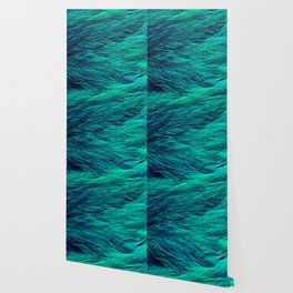 Teal Feathers Wallpaper