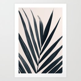 Gray Palm #3 Art Print