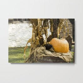 Autumn Season Metal Print