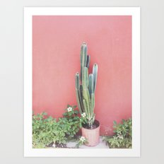 costa rica cacti Art Print