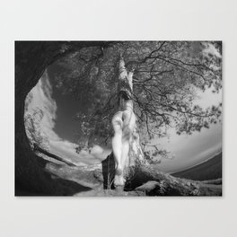9102-LP Tree of Life Nature Goddess Earth Mother One with the Tree BW Fine Art Nude Canvas Print