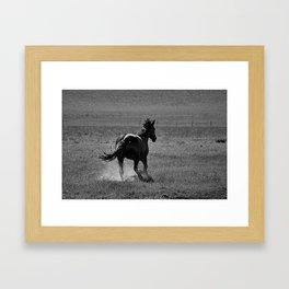 Wild 01 Framed Art Print
