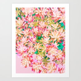 Cactus Fall - Pink and Green Art Print