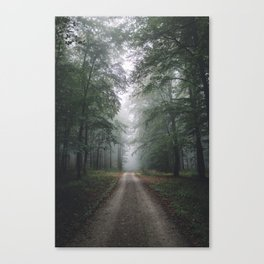 Autumn Forest Walk Canvas Print