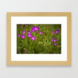 Fresh Spring Wildflowers by Reay of Light Photography Framed Art Print