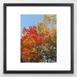 Autumn Leaves II Framed Art Print