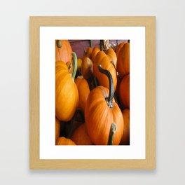 Vector Style Harvest Of Pumpkins Framed Art Print