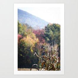 Autumn's End of Harvest Art Print