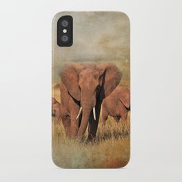 Family Walk iPhone Case