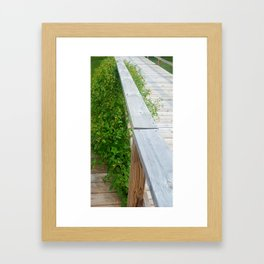 Jewel Weed Framed Art Print