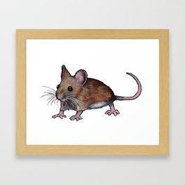 Brown Mouse, Oil Pastel Art, Little Critter Framed Art Print
