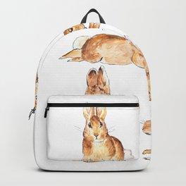 Bunnies in Tales of Peter Rabbit  characters Beatrix Potter Backpack