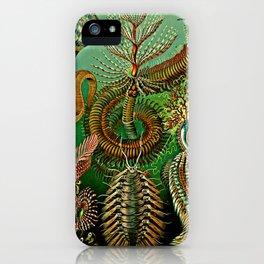 Chaetopoda iPhone Case