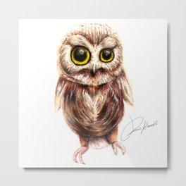 cute owl - gufo - hibou - búho Metal Print