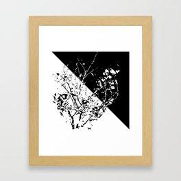 Tri Bush Framed Art Print