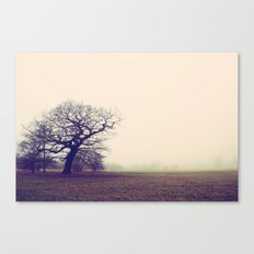 Tree in Fog Canvas Print