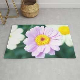 Soft Pink Marguerite Daisy Flower #1 #decor #art #society6 Rug
