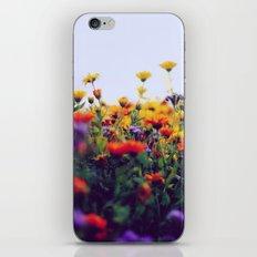 flower field II iPhone & iPod Skin